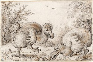 The Democratic Dodo Beginning of the End inset